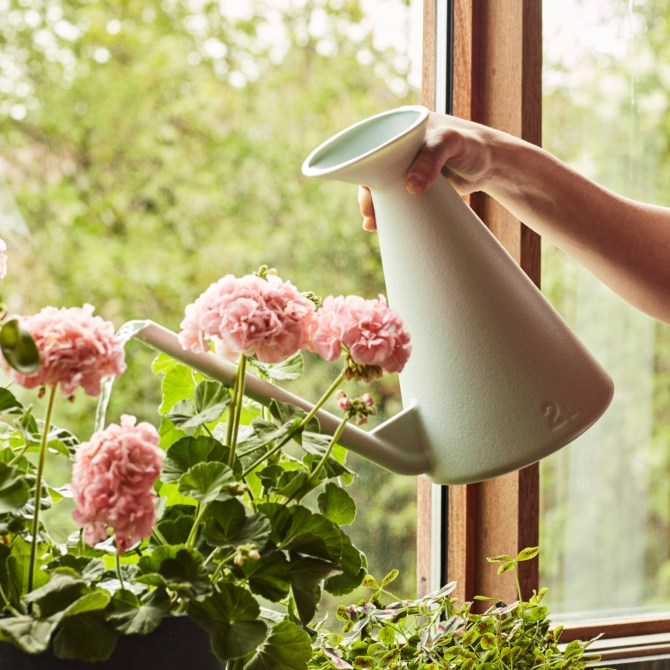 Regador Hay Watering Can
